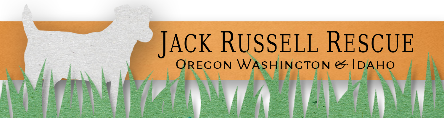 Jack Russell Rescue Oregon Washington & Idaho Inc.
